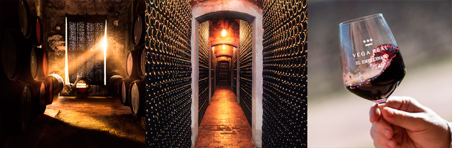 wine cellars and sherry